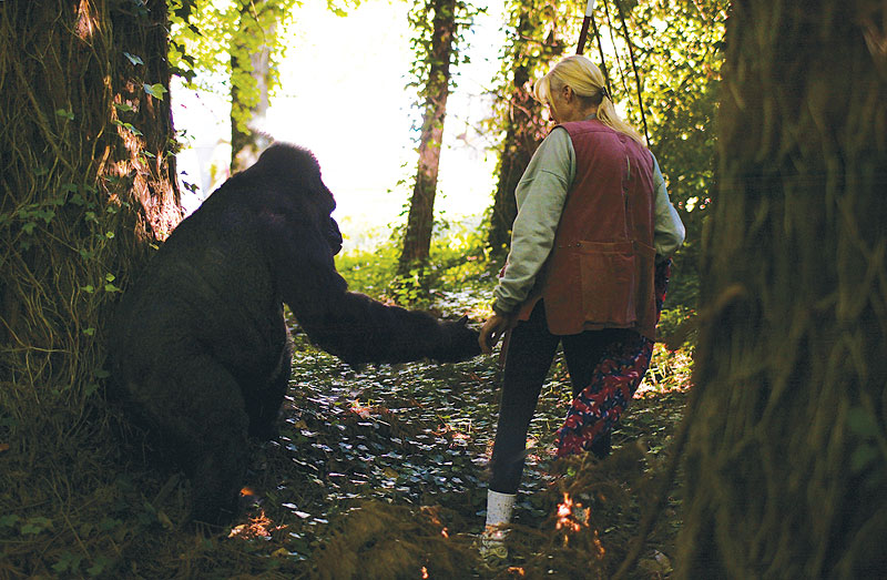 Koko and Penny envision a brighter future for great apes.