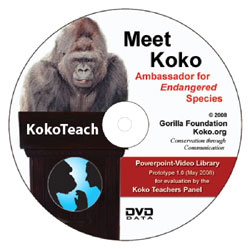 KokoTeach: Multimedia Educational Program for Teachers – The