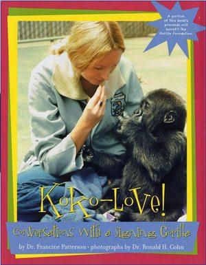 Kokos kitten book online